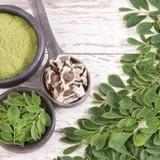 Ajurvédský poklad - Moringa olejodárná