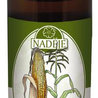 Kukuřice setá (T17)