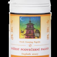 Svěžest podvečerní pagody (185)